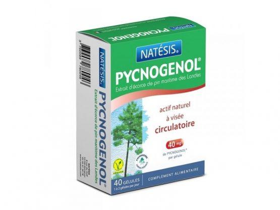 Pycnogenol – 40 gélules Par Natésis