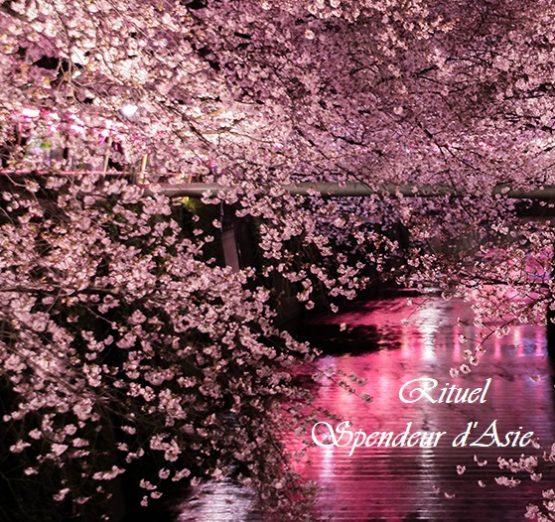 Rituel Splendeur d'Asie 180mm